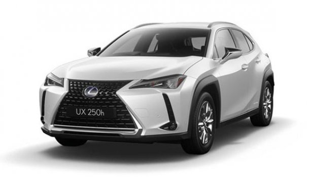 Lexus UX 250h Luxury 2020 Price in Netherlands