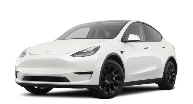 Tesla Model Y Long Range 2021 Price in China