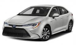 Toyota Corolla XLE 2021
